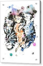 Three Sleeping Kittens Acrylic Print