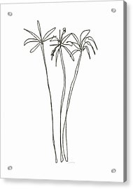 Three Tall Palm Trees- Art By Linda Woods Acrylic Print