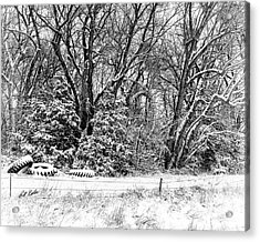 Three Tires And A Snowstorm Acrylic Print by Bill Kesler