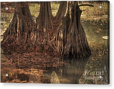 Acrylic Print featuring the photograph Three Trees In Lake Murray by Tamyra Ayles