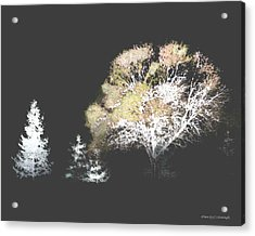 Three Trees In The Dark Acrylic Print