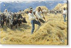Threshing In The Abruzzi, 1890 Acrylic Print