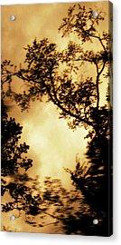 Threshold Acrylic Print by Kristin Sharpe