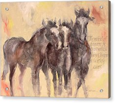 Through A Horses Ears Acrylic Print by Ron Patterson