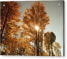 Through Sun Glasses Acrylic Print