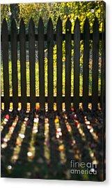 Through The Fence Acrylic Print by Hideaki Sakurai