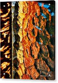 Through The Glass Acrylic Print by Hideaki Sakurai