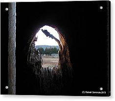 Through The Knot Hole Acrylic Print