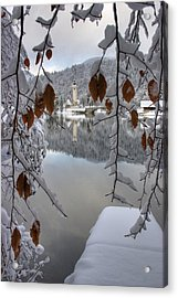 Acrylic Print featuring the photograph Through The Snow Trees by Ian Middleton