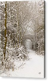 Through The Trees Through The Snow Acrylic Print