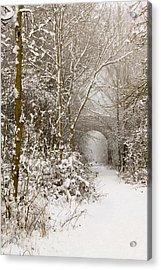 Through The Trees Through The Snow Acrylic Print by Adam Smith