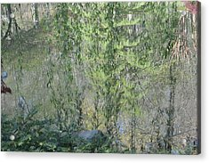 Through The Willows Acrylic Print by Linda Geiger