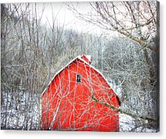 Acrylic Print featuring the photograph Through The Woods by Julie Hamilton