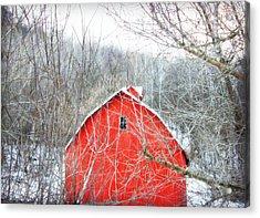 Through The Woods Acrylic Print by Julie Hamilton