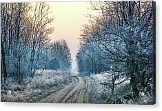 Through The Woods Acrylic Print by Mimulux patricia no No