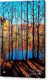 Thru Trees Acrylic Print by Andrew Kazmierski
