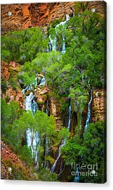 Thunder River Oasis Acrylic Print by Inge Johnsson