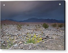 Thunderstorm Over Death Valley National Park Acrylic Print
