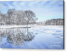 The March Of Winter Acrylic Print by Evelina Kremsdorf