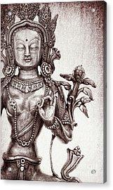 Tibetan Tara Acrylic Print by Tim Gainey