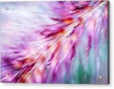 Tickle My Fancy Acrylic Print by Carolyn Marshall