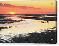 Tidal Flats At Sunset Acrylic Print by Roupen  Baker