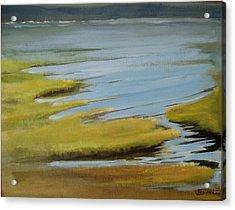 Tidal Pond Acrylic Print by Jenny Stanley