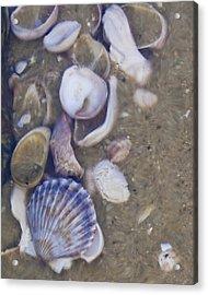 Tidal Pool - Brant Point - Nantucket Acrylic Print by Henry Krauzyk