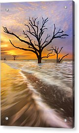 Tidal Trees - Craigbill.com - Open Edition Acrylic Print by Craig Bill