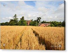 Tiddington, Oxfordshire Acrylic Print by Nichola Denny