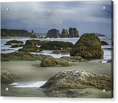 Acrylic Print featuring the photograph Tidepool Fade by Rob Wilson