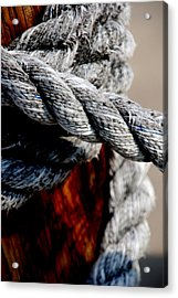 Acrylic Print featuring the photograph Tied Together by Susanne Van Hulst