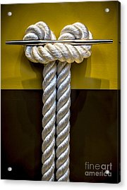Tied Up In Knots Acrylic Print