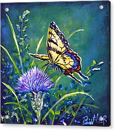 Tiger And Thistle 2 Acrylic Print by Gail Butler