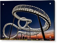 Tiger And Turtle At Dawn Acrylic Print by Holger Schmidtke