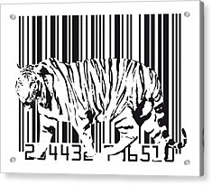 Tiger Barcode Acrylic Print by Michael Tompsett