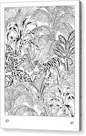 Tiger Black And White Acrylic Print