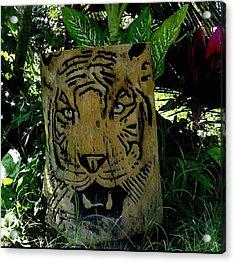 Tiger Acrylic Print by Calixto Gonzalez