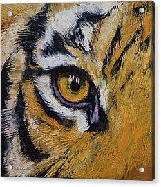 Tiger Eye Acrylic Print