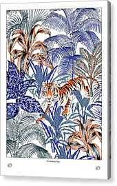 Tiger In It's Habitat Acrylic Print by Jacqueline Colley