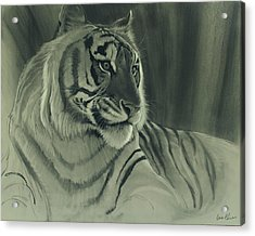 Acrylic Print featuring the digital art Tiger Light by Aaron Blaise