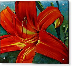 Tiger Lily Acrylic Print by Doug Strickland