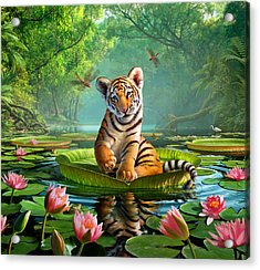 Tiger Lily Acrylic Print by Jerry LoFaro