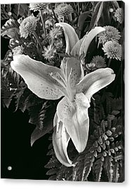 Tiger Lily Orchid  2 Acrylic Print by David Thompson