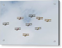 Acrylic Print featuring the photograph Tiger Moth Formation by Gary Eason