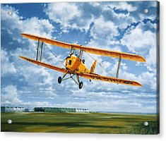 'tiger Moth - Wind Beneath My Wings' Acrylic Print by Colin Parker