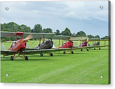 Acrylic Print featuring the photograph Tiger Moths Formation Shutdown by Gary Eason