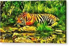 Tiger Resting - Da Acrylic Print