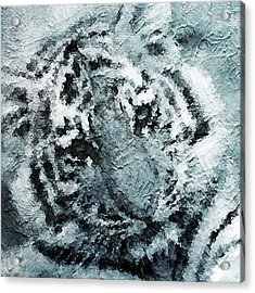Tiger Acrylic Print by Stacey Chiew