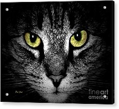 Acrylic Print featuring the digital art Tiger Tiger 3 by Dale   Ford